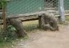 Sloní lavička