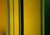 Bambus II.